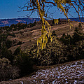 Kneeland Moonrise by Greg Henderson