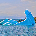 Kneeling Before The Queen Iceberg In Saint Anthony-newfoundland  by Ruth Hager