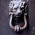 Knock Knock by Eric Tressler
