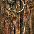 Knock On Wood by Evelina Kremsdorf