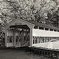 Knox Covered Bridge In Sepia by Bill Cannon
