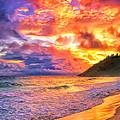 Kohala Sunset by Dominic Piperata