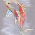 Koi Fish Swimming by MM Anderson
