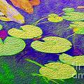Koi Fish Under The Lilly Pads  by Jon Neidert