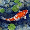 Koi Pond by Hailey E Herrera