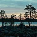 Koirajarvi Dawn by Jouko Lehto