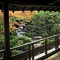 Kokoen Garden - Himeji City Japan by Daniel Hagerman