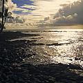 Kona Coast 4 by Daniel Hagerman