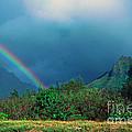 Koolau Mountains And Rainbow by Thomas R Fletcher