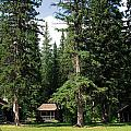 Kootenay Park Lodge Cabins by Gerry Bates