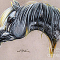 Kordelas Polish Arabian Horse Soft Pastel by Angel Ciesniarska