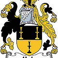 Kyle Coat Of Arms Irish by Heraldry