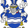 Kyne Coat Of Arms Irish by Heraldry
