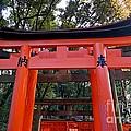 Kyoto Fushimi Shrine-4 by Sergey Reznichenko