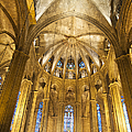 La Catedral Barcelona Cathedral by Matthias Hauser