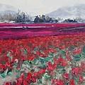 La Conner Tulips by Lori Pittenger