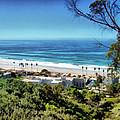 La Jolla Beach by Ann Powell