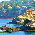 La Jolla California Cove And Caves by Douglas MooreZart