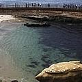 La Jolla Cove by Linda Gray
