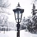 La Lumiere D'hiver by Natasha Marco