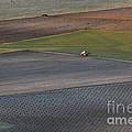 La Mancha Landscape - Spain Series-siete by Heiko Koehrer-Wagner