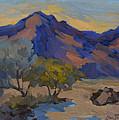 La Quinta Shadows by Diane McClary