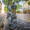 La Rambla Fountain  by Yhun Suarez