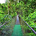 La Tirimbina Suspension Bridge by Gary Keesler