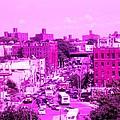 La Vie En Rose Le Bronx by La Culture Critique