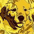 Labrador by Chris Butler