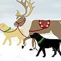 Labrador Dogs Lead Reindeer by Amy Reges