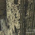 Labyrinth Dimensions 666 by R Muirhead Art
