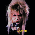 Labyrinth - Goblin King by Brand A