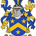 Lackey Coat Of Arms Irish by Heraldry