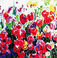 Laconner Tulips by Marti Green