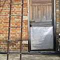 Ladder And Door by Tim Hester