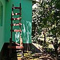 Ladder by Karen Adams