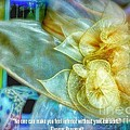 Ladies Bonnet Quote  by Susan Garren