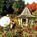 Ladies In Rose Garden by Mindy Bench