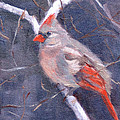 Lady In Red by Sandra Harris