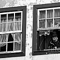 Lady In The Window II by Dave Dos Santos