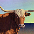 Lady Longhorn by James W Johnson