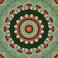 Ladybug Kaleidoscope by MM Anderson