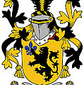 Laffan Coat Of Arms Irish by Heraldry