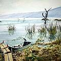 Lago Lull by Patrick DuMouchel