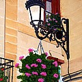 Laguardia Street Lamp  by Mike Robles