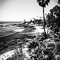 Laguna Beach Pacific Ocean Shoreline In Black And White by Paul Velgos