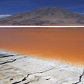 Laguna Colorada, Altiplano Bolivia by Peter McBride
