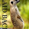 Laid Back Meerkat Phone Case Cut by David Lee Thompson