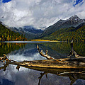 Lake 12 by Ingrid Smith-Johnsen